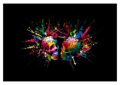 Abstract Skulls - Love Splash Paint Colour Large Poster & Canvas Picture Prints • 11.99£