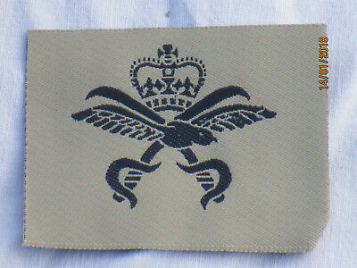 Royal Air Force, Physical Training Instructor, Khaki, Force Fitness Instructor • 3.73£