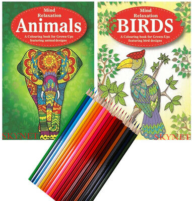 2 X Adult Colouring Book Books Animals & Birds A4 Size With 20 Colouring Pencils • 6.99£