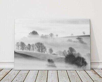 £13.95 • Buy Trees In Mist In Beautiful Cornish Countryside Canvas Picture Print Cornwall