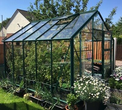 £12.99 • Buy 3mm Clear Perspex Petg Plastic Sheet Glazing Impact Greenhouse Shed Window Panel
