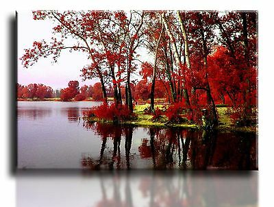 £24.99 • Buy Large Wall Art Canvas Print Of Red Trees Lake Framed 20 X30