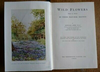 'Wild Flowers In Their Natural Haunts' Edward Step,  Illustrated Hardback C.1922 • 10.99£