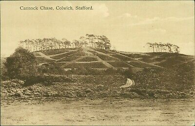 Cannock Chase, Colwich WHS Greengate Series  QX.1729 • 5.75£