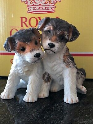 Royal Osborne China Dogs Terriers Boxed Perfect • 9.99£