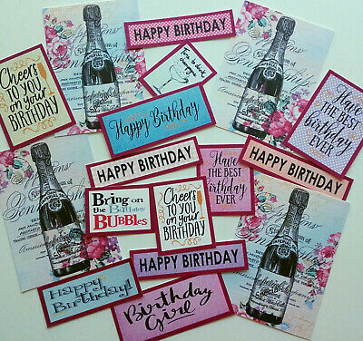 14+ LADIES Card Making Toppers/Tags/Sentiments Hand Made BIRTHDAY CHAMPERS (C14) • 1.79£