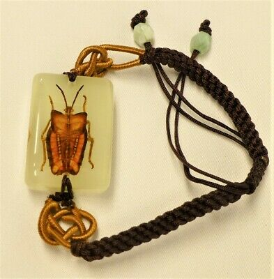 $5.60 • Buy Beetle Insect Bracelet In Resin Specimen Collection