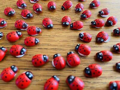 10 Black & Red Ladybirds🐞 Peel Off Stickers For Crafting/UK FREE Post *+2 FREE* • 2.15£