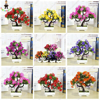$2.99 • Buy Gardenia Bonsai (cape Seeds Plants Jasmine)* Potted Mixed Home 100pcs/lot