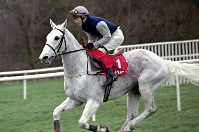 £12.50 • Buy Desert Orchid 09 Ridden By Colin Brown (horse Racing) Photo Prints-mugs-keyrings