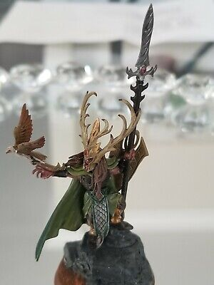 $40 • Buy Warhammer AOS Wood Elves Nomad Prince Painted