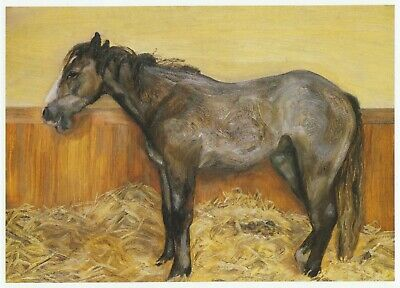 A Filly Lucian Freud Horse Print In 11 X 14 Inch Mount Ready To Frame SUPERB • 19.95£