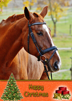 £3.35 • Buy Horse Wild Animal Christmas Card - Free Delivery