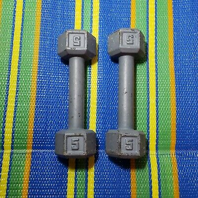 $ CDN40.23 • Buy (2) 5 Lb Cast Iron Dumbbells Hex Weight Dumbbells - Fast Shipping!