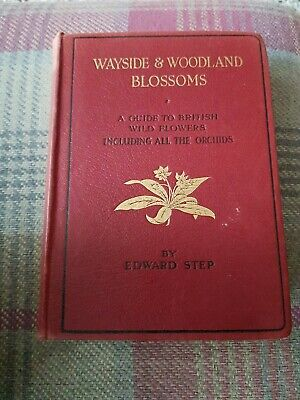 Wayside And Woodland Blossoms By Edward Step (2/2) • 8£