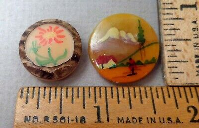$24.99 • Buy Lot Of 2 Antique VEGETABLE IVVORY BUTTONS, W/ Painted Scenes, 1 Tree Bark Style