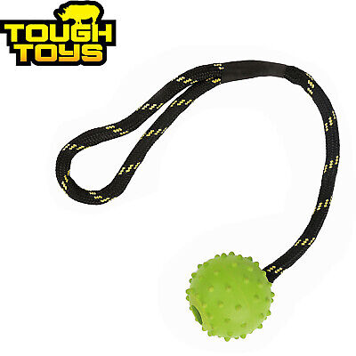 Tough Toys 2  Floating Studded Rubber Ball On Rope Dog Puppy Toy Floater Tt0210 • 7.99£