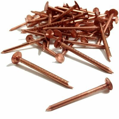 COPPER CLOUT QUALITY ROOFING NAILS - TREE STUMP REMOVAL 30mm / 40mm X 2.65mm • 2.59£