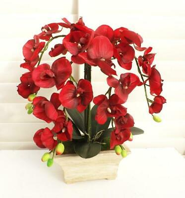 AU65.95 • Buy Artificial Phalaenopsis Soft Touch Red Orchid Arrangement Life Like