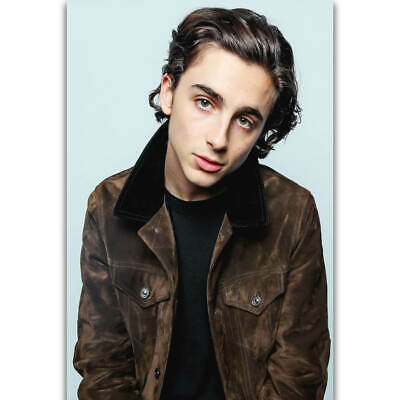 AU19.95 • Buy 249854 Timothee Chalamet Actor Movie Call Me By Your Name WALL PRINT POSTER AU