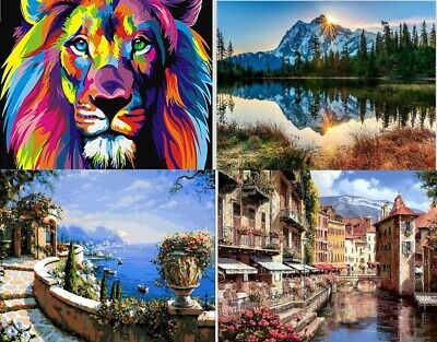 DIY Oil Acrylic Painting Kit Paint By Numbers Adult Children Beginners Frameless • 7.99£