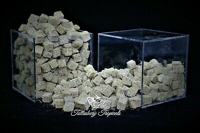 10g Sample Gils - 100% Freeze Dried Tubifex Worm Cubes -Angel,Discus,Oscar • 2.60£