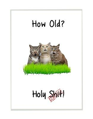 £2.99 • Buy Funny Rude Cats Birthday Card For Men & Women Friend Brother Sister Mum Dad