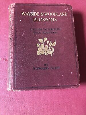 WAYSIDE AND WOODLAND BLOOMS., Step, Edward., A Guild To British Wild Flowers • 6.50£