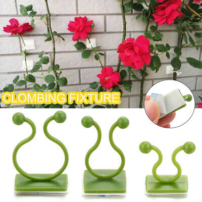 £3.70 • Buy Invisible Plant Climbing Clips Wall Vines Fixture Wall Sticky Hook Magic Holder~