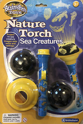 Nature Torch Sea Creatures From Brainstorm Toys • 3.99£