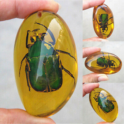 Beautiful Resin Amber Green Beetle Fossil True Insect Specimen Polishing Pendant • 5.18£