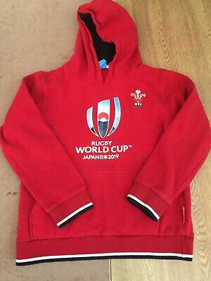 Boys Wales Rugby Union Hoodie Age 11-12 • 3.99£