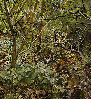 Garden Painting Lucian Freud Botanical Print In 11 X 14 Inch Mount SUPERB • 19.95£