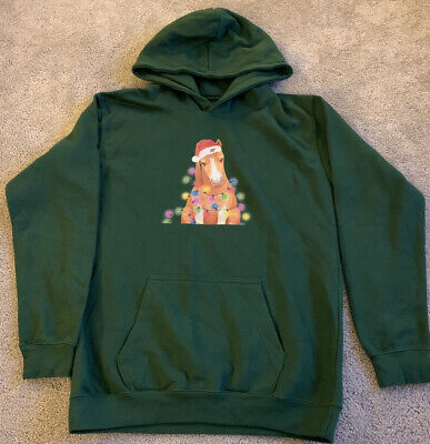 Christmas Hoodie Jumper Horse Pony Theme Kids Green Age 10-13 • 10£