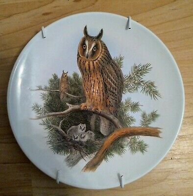 Long Eared Owl Plare By Poole Pottery • 3£