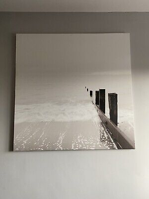 Large Ikea Canvass Picture • 10£