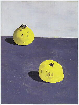 Quinces Lucian Freud Botanical Still Life Print In 11 X 14 Inch Mount SUPERB • 19.95£