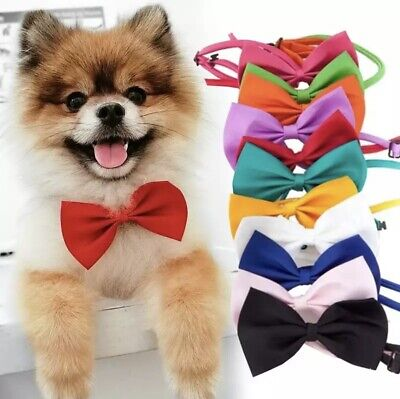 Colours Bow Tie Collar Adjustable Design For Kitten Puppy Or Small Dog Cat • 1.29£