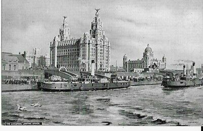 £4 • Buy The  Liverpool Landing Stage