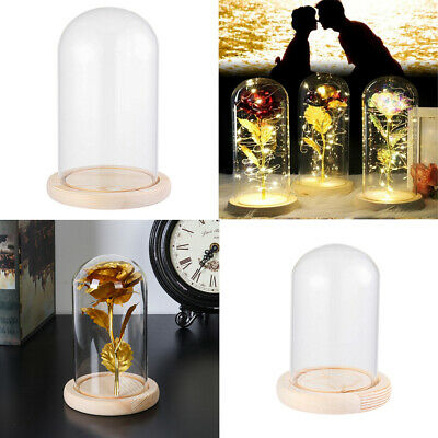 £8.30 • Buy Glass Display Bell Jar Dome Cloche With Base Decor Desk Vintage Stand Cover HQ