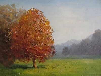 Original Landscape Oil Painting Canvas 8x10 Inches Framed Free Shipping • 52.99£