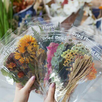 £3.35 • Buy 6pcs Vintage Dried Flower Stickers Scrapbooking Stickers Diary Plant Labels Hot
