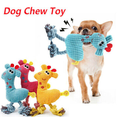 £3.29 • Buy Pet Dog Puppy Chicken Chew Toy Squeaker Squeaky Soft Plush Play Sound Toys UK