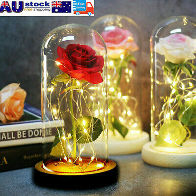 AU28.89 • Buy LED Light Enchanted Eternal Flower Rose In Glass Dome Valentine's Day Gift Decor