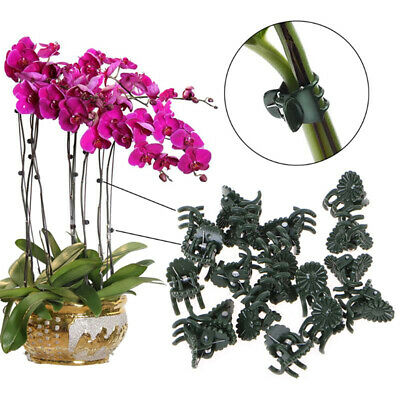 £2.60 • Buy 20Pcs Plant Fix Clips Orchid Stem Vine Support Flowers Tied Branch Clamping_Z6