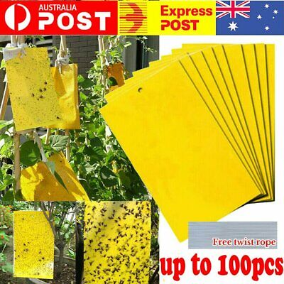 AU8.99 • Buy 10-100 Pc Yellow Sticky Glue Paper Insect Trap Catcher Killer Fly Aphids Wasp
