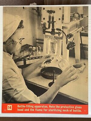 £10 • Buy WW2 Ministry Of Information Blood Transfusion Cardboard Poster Bottle Filling