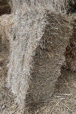 £16.99 • Buy Hay Bale In A Bag. Pets Bedding Feed. From Our Meadows In The Garden Of England