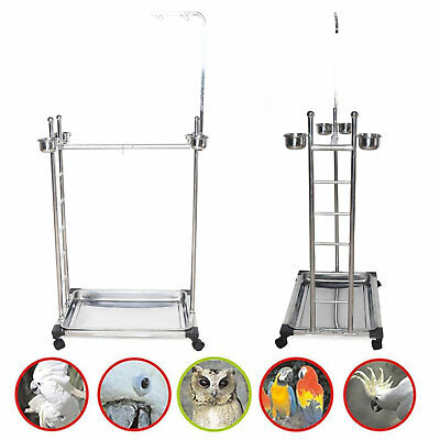 £104 • Buy Bird Play Stand Parrot Playstand Pet Bird Tray Feeder Stainless Steel UK