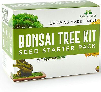 £19.56 • Buy Bonsai Tree Kit Grow Your Own Trees From Seeds Sustainable Eco Gardening Gift